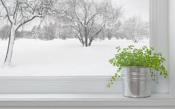winter proofing windows doors